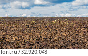 Купить «Agricultural land cultivated for sowing. Plowed field.», фото № 32920048, снято 22 сентября 2019 г. (c) Акиньшин Владимир / Фотобанк Лори