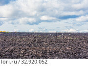 Купить «Agricultural land cultivated for sowing. Plowed field.», фото № 32920052, снято 22 сентября 2019 г. (c) Акиньшин Владимир / Фотобанк Лори