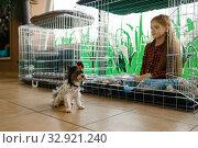 Купить «Little girl sitting in big cage, pet store», фото № 32921240, снято 18 октября 2019 г. (c) Tryapitsyn Sergiy / Фотобанк Лори