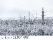 High-voltage transmission line from smoked power station passes in wintry forest, snowy wires and trees. Стоковое фото, фотограф Кекяляйнен Андрей / Фотобанк Лори