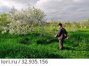 Купить «Man mows grass by manual lawnmower», фото № 32935156, снято 1 мая 2015 г. (c) Арестов Андрей Павлович / Фотобанк Лори