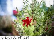 Купить «Christmas decorations for sale in a plant nursery, Lombardy, Italy.», фото № 32941520, снято 5 апреля 2020 г. (c) easy Fotostock / Фотобанк Лори