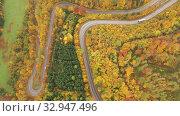 Купить «Scenic aerial view of bends of road between trees on hillsides in autumn», видеоролик № 32947496, снято 18 октября 2019 г. (c) Яков Филимонов / Фотобанк Лори