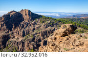 Купить «Пейзажи острова Гран Канария», фото № 32952016, снято 11 января 2020 г. (c) Tamara Kulikova / Фотобанк Лори