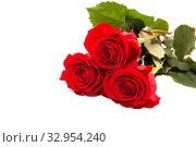 Купить «Three red roses», фото № 32954240, снято 6 февраля 2017 г. (c) Юлия Бабкина / Фотобанк Лори