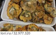 Купить «Closeup of fresh raw red pine mushrooms (lactarius deliciosus) in plastic trays», видеоролик № 32977320, снято 3 июля 2020 г. (c) Яков Филимонов / Фотобанк Лори