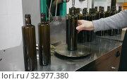 Купить «Process of bottling of olive oil in glass bottles on artisanal olive producing oil factory», видеоролик № 32977380, снято 26 февраля 2020 г. (c) Яков Филимонов / Фотобанк Лори
