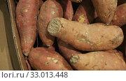 Купить «Raw sweet potato in box on farmers market», видеоролик № 33013448, снято 19 февраля 2020 г. (c) Яков Филимонов / Фотобанк Лори