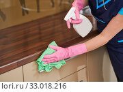 Купить «cleaning service. wiping kitchen cabinet with cloth and liquid», фото № 33018216, снято 23 декабря 2019 г. (c) Дмитрий Калиновский / Фотобанк Лори