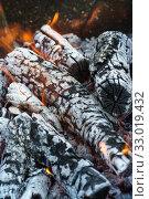 Горение дров в мангале. Выборочный фокус. Стоковое фото, фотограф Наталья Гармашева / Фотобанк Лори