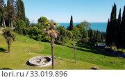 Купить «nature in Abkhazia near New Athos in summer», видеоролик № 33019896, снято 2 февраля 2020 г. (c) Володина Ольга / Фотобанк Лори