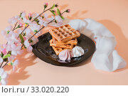 Купить «Sweet delicious dessert, homemade baked goods for breakfast. Belgian European soft waffles on a black plate and meringue», фото № 33020220, снято 30 ноября 2019 г. (c) Светлана Евграфова / Фотобанк Лори