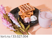 Купить «Sweet delicious dessert, homemade baked goods for breakfast. Belgian European soft waffles on a black plate, meringue, fruit berry yogurt», фото № 33027004, снято 30 ноября 2019 г. (c) Светлана Евграфова / Фотобанк Лори