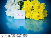 Купить «bouquet of white chrysanthemums with a greeting card for mom», фото № 33027956, снято 4 февраля 2020 г. (c) Peredniankina / Фотобанк Лори