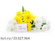 Купить «bouquet of yellow and white chrysanthemums isolated on white», фото № 33027964, снято 4 февраля 2020 г. (c) Peredniankina / Фотобанк Лори