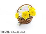 Купить «bouquet of yellow and white chrysanthemums isolated on white», фото № 33033372, снято 5 февраля 2020 г. (c) Peredniankina / Фотобанк Лори