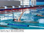 Купить «Swimmers swimming in the pool», фото № 33033816, снято 1 декабря 2019 г. (c) Wavebreak Media / Фотобанк Лори