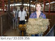 Купить «Man and woman feeding horses with hay», фото № 33039356, снято 2 октября 2018 г. (c) Яков Филимонов / Фотобанк Лори