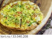 Вегетарианская пицца с томатами, грибами и брокколи на доске. Стоковое фото, фотограф Наталья Гармашева / Фотобанк Лори