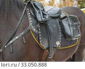 Equestrian ammunition. Стоковое фото, фотограф Акиньшин Владимир / Фотобанк Лори