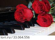 The red rose. Стоковое фото, фотограф Pogosov / Фотобанк Лори