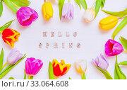 Купить «Lovely spring tulip flowers on wooden backdrop with inscription Hello Spring, spring holiday postcard», фото № 33064608, снято 7 марта 2018 г. (c) Зезелина Марина / Фотобанк Лори