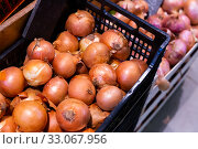 Купить «Pile of different onion varieties on market counter», фото № 33067956, снято 17 февраля 2020 г. (c) Яков Филимонов / Фотобанк Лори