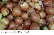 Купить «Image of boxes with onion for sale in supermarket, nobody», видеоролик № 33114080, снято 20 ноября 2019 г. (c) Яков Филимонов / Фотобанк Лори
