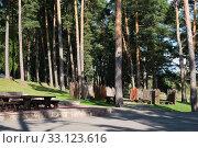 Купить «Вид на сосновый бор в парк-отеле Яхонты Таруса. Д. Грибовка», фото № 33123616, снято 20 февраля 2020 г. (c) Кузин Алексей / Фотобанк Лори