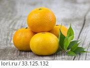 Купить «fresh tangerines», фото № 33125132, снято 10 июля 2020 г. (c) PantherMedia / Фотобанк Лори