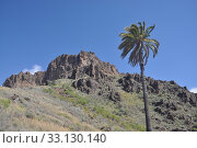 mountain spain mountains canaries canary. Стоковое фото, фотограф Volker Rauch / PantherMedia / Фотобанк Лори