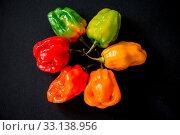 Купить «Many vibrant colors on peppers on black slate bacground», фото № 33138956, снято 19 февраля 2020 г. (c) easy Fotostock / Фотобанк Лори