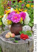 Купить «Осенние дары природы на старом пне в саду», фото № 33177088, снято 13 августа 2019 г. (c) Елена Коромыслова / Фотобанк Лори