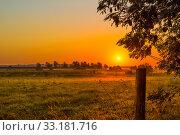 Купить «Misty morning with a sunrise», фото № 33181716, снято 31 мая 2020 г. (c) PantherMedia / Фотобанк Лори