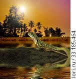 Купить «Chameleon iguana on timber decay», фото № 33185464, снято 5 апреля 2020 г. (c) PantherMedia / Фотобанк Лори
