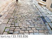Купить «medieval cobblestone street in Bratislava», фото № 33193836, снято 5 апреля 2020 г. (c) PantherMedia / Фотобанк Лори
