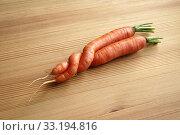 Купить «two entwined carrots (a whim of nature)», фото № 33194816, снято 2 апреля 2020 г. (c) PantherMedia / Фотобанк Лори