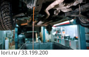Купить «Car repair service - engine cooling fluid pouring out from a hose», видеоролик № 33199200, снято 6 апреля 2020 г. (c) Константин Шишкин / Фотобанк Лори