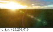 Купить «Flight above rural summer landscape with endless yellow field at sunny summer evening. Agricultural farmland at autumn sunrise», видеоролик № 33209016, снято 1 мая 2019 г. (c) Александр Маркин / Фотобанк Лори