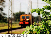 Купить «Railcar for maintenance of the railway and security checks and the young elm leaves in the foreground», фото № 33220616, снято 10 апреля 2020 г. (c) easy Fotostock / Фотобанк Лори