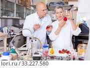 Купить «Scientists analyzing agricultural products», фото № 33227580, снято 24 января 2019 г. (c) Яков Филимонов / Фотобанк Лори