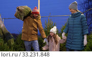 Купить «happy family buying christmas tree at market», видеоролик № 33231848, снято 6 января 2020 г. (c) Syda Productions / Фотобанк Лори