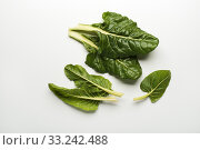 Fresh swiss chard leaves isolated on a white background. Стоковое фото, фотограф Dusan Zidar / PantherMedia / Фотобанк Лори