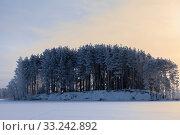 Landscape with snowy pine trees on lake island at winter season, sunset over icy surface. Стоковое фото, фотограф Кекяляйнен Андрей / Фотобанк Лори
