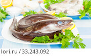 Купить «freshness eel and vegetables on the plate», фото № 33243092, снято 30 марта 2020 г. (c) Татьяна Яцевич / Фотобанк Лори