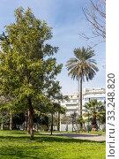 Купить «Central Rizari Park in Athens (Greece)», фото № 33248820, снято 26 февраля 2020 г. (c) Татьяна Ляпи / Фотобанк Лори