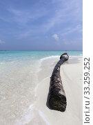 Купить «Maldives Island in Lhaviyani Atoll», фото № 33259252, снято 5 июля 2020 г. (c) PantherMedia / Фотобанк Лори