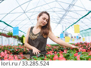 Young woman lovingly touches flowers in a greenhouse. Стоковое фото, фотограф Евгений Харитонов / Фотобанк Лори
