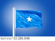 Flag of Somalia flying against a blue sky. Стоковое фото, фотограф Zoonar.com/Ruslan Gilmanshin / age Fotostock / Фотобанк Лори