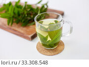 Купить «herbal tea with fresh peppermint on wooden board», фото № 33308548, снято 12 июля 2018 г. (c) Syda Productions / Фотобанк Лори